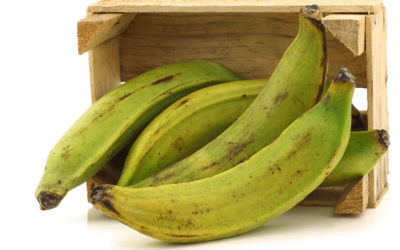 What's a Plantain?